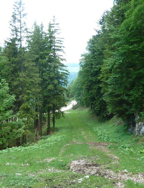 P1000456 gravel road ahead