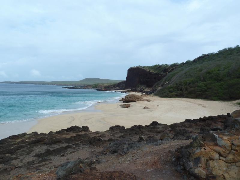 P1020084 nudist beach02