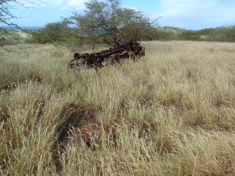P1020144 abandoned overturned vehicle
