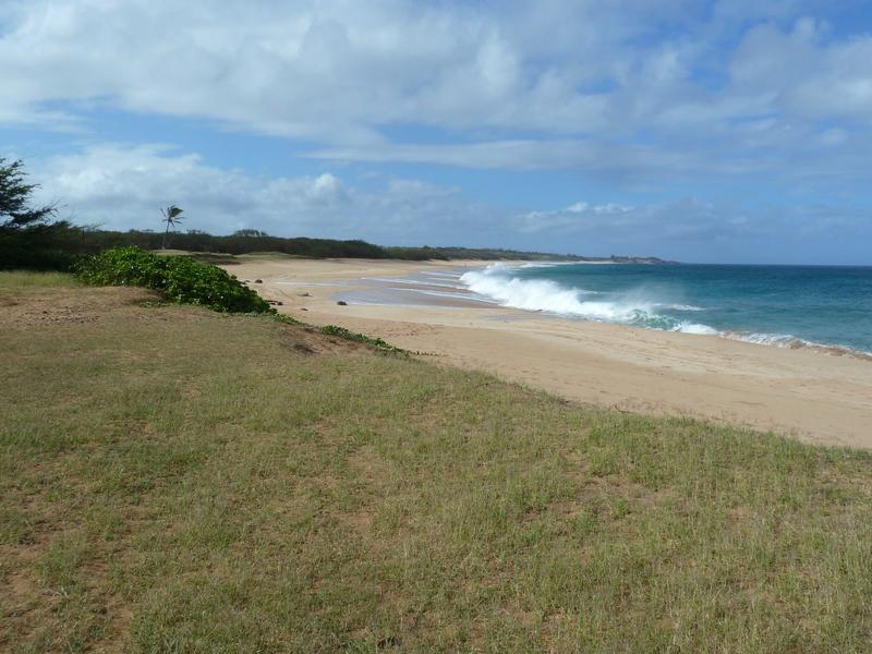 P1020099 2.4mile beach