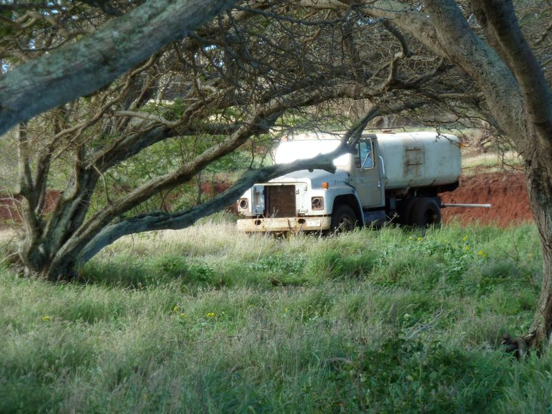 P1020024 Forlorn Truck