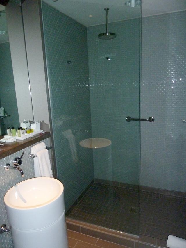 P1020163 intercontinental shower