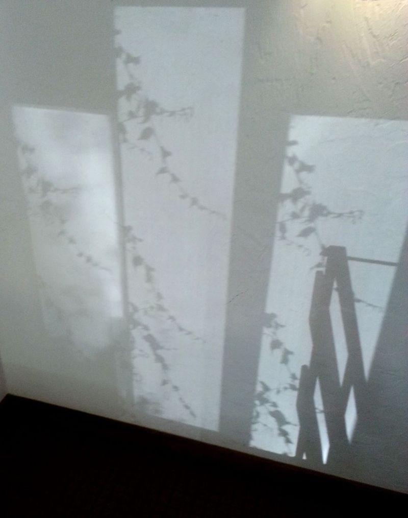 20130720_091835 - wall shadows
