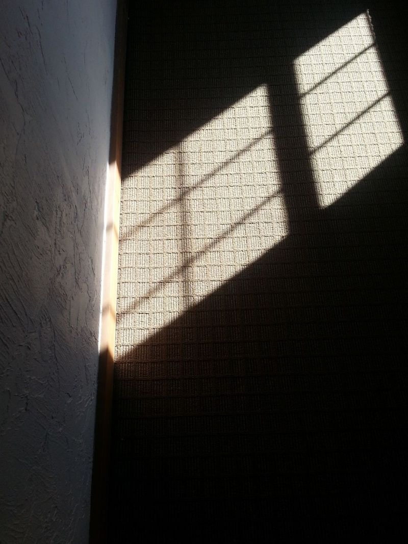 20130720_092038 - Floor Shadows