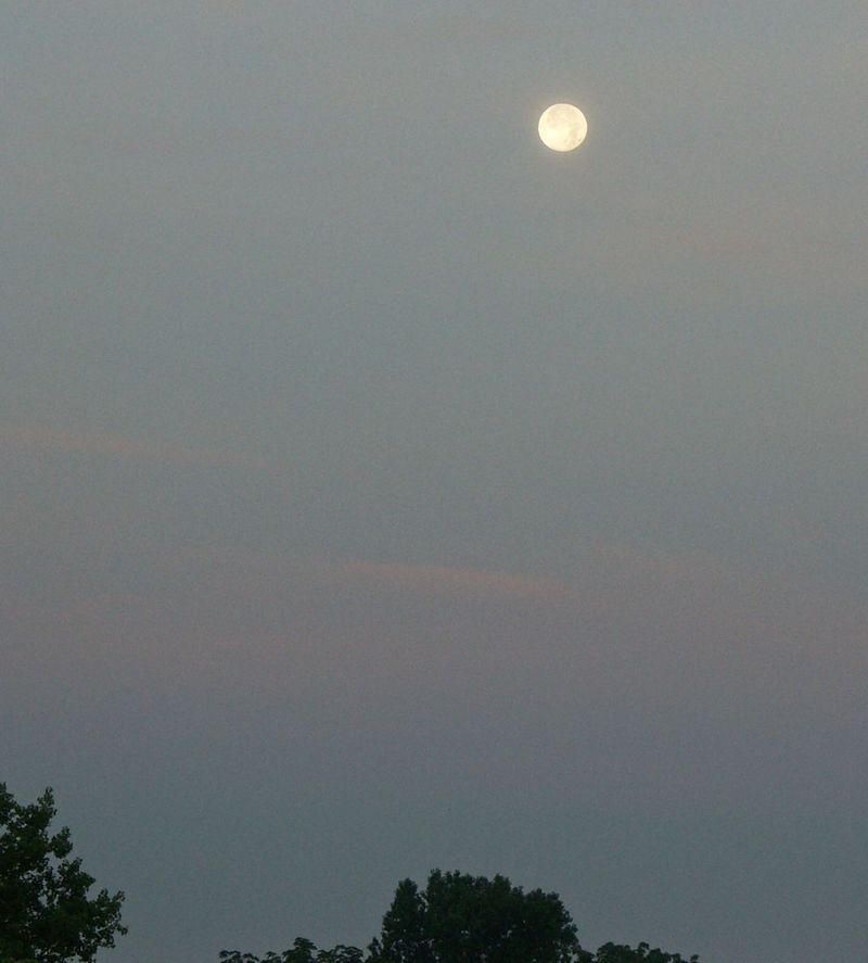 PICT0004 Moonset