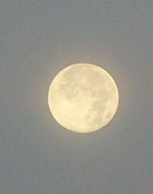 PICT0003 moon