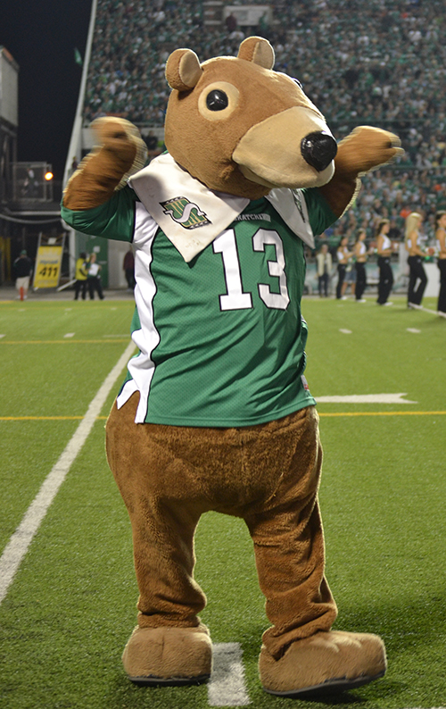Gainer the Gopher