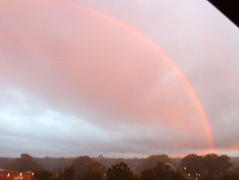 P1020265 Rainbow right half