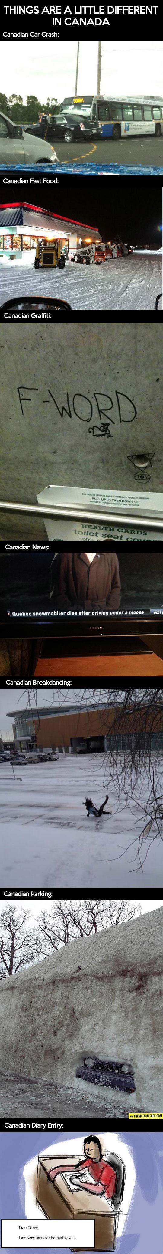 Funny-Canada-different-car-crash