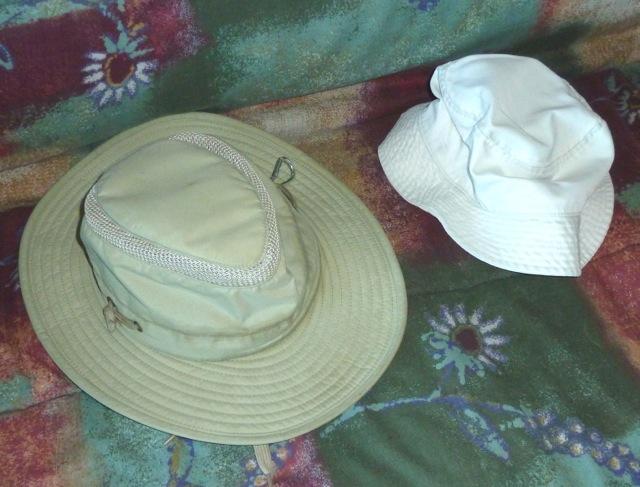 P1020309 hats