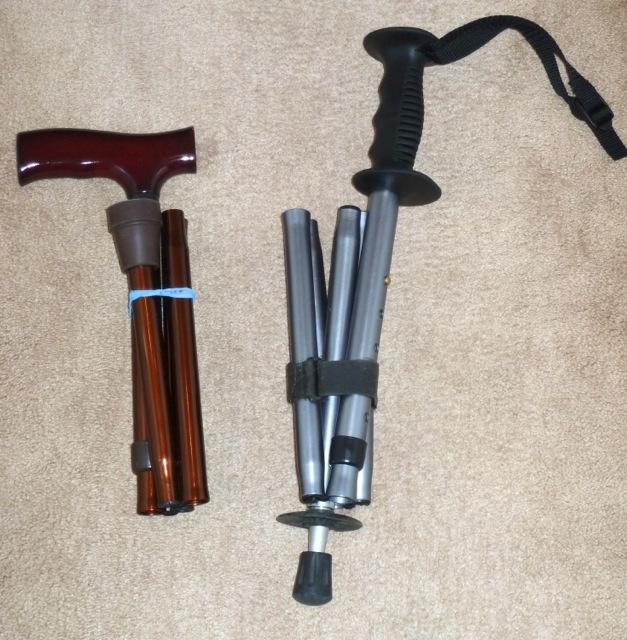 P1020316 Cane vs Walking stick