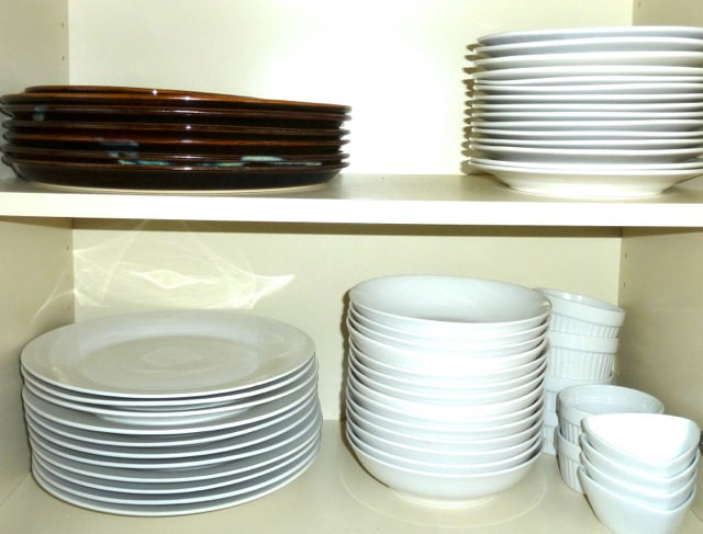 P1020323 Dishes & 40 Things Every Self-Respecting Person \u003c90 Should Own - EclectEcon